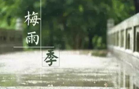 梅雨季节如何防霉-抗菌剂/防霉剂/干燥剂/防霉片厂家批发